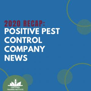 PST – 2020 Positivity Recap